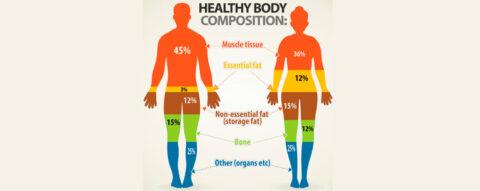Check up bioelettrico